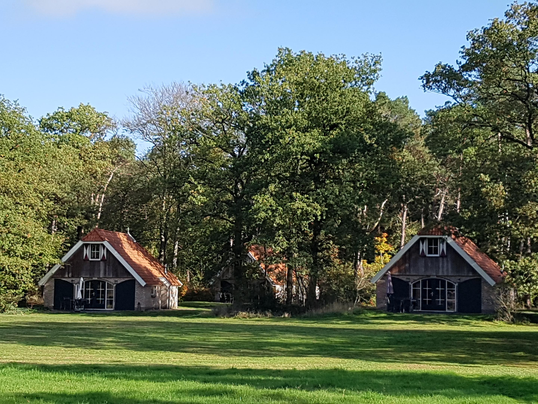 6 Persoon Vakantiehuis Steenwijk Op Buitengoed Fredeshiem