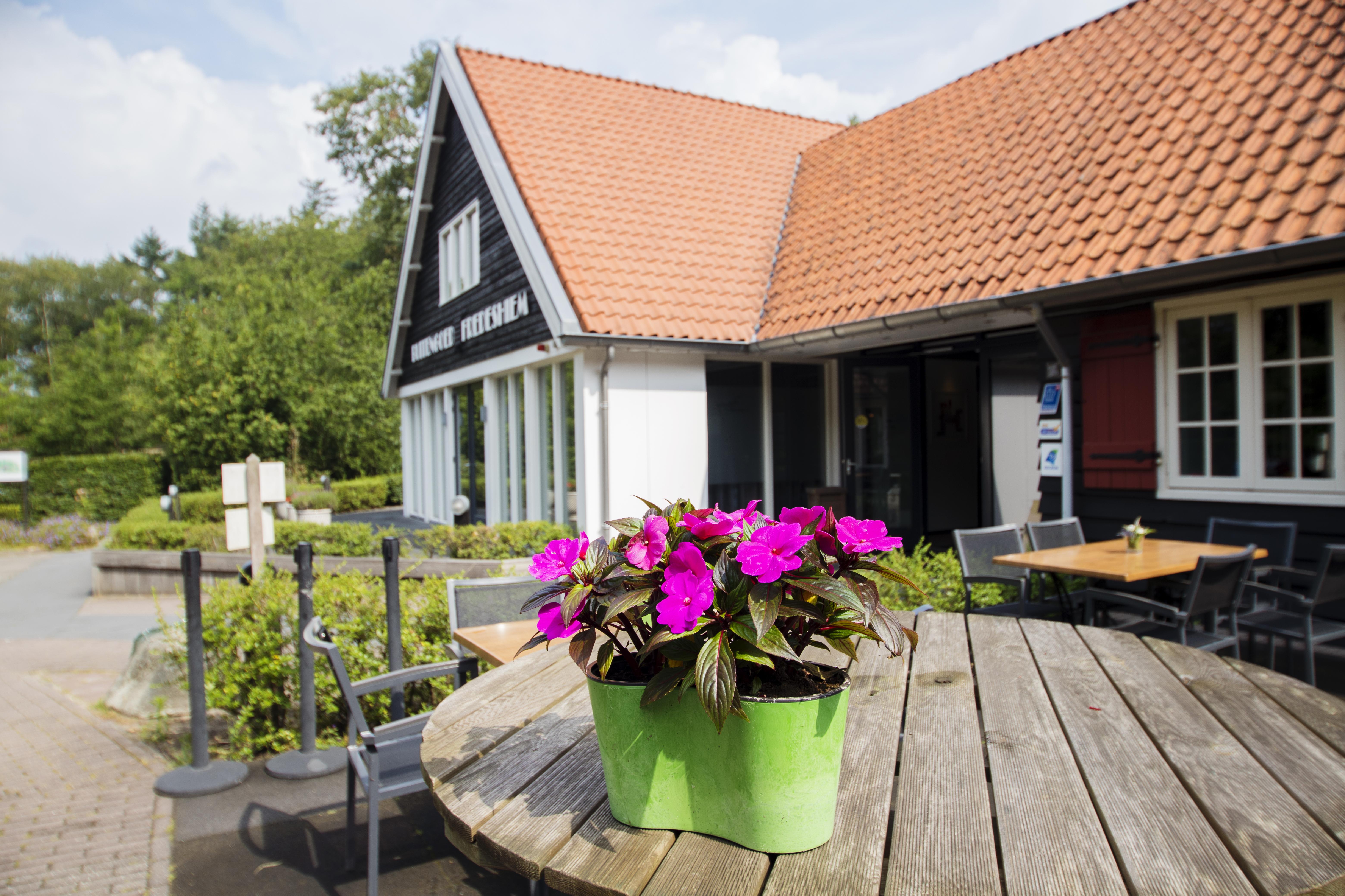 Hotel Vakantiehuis Groepsaccommodatie Fredeshiem De Bult Steenwijk